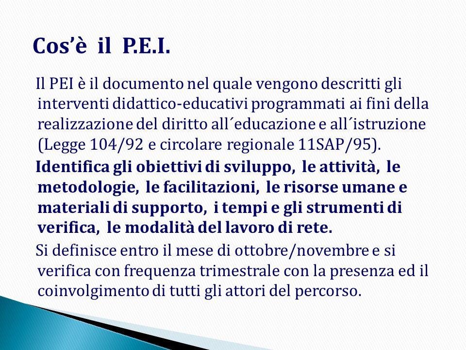 Il PEI è il documento nel quale vengono descritti gli interventi didattico-educativi programmati ai fini della realizzazione del diritto all´educazion