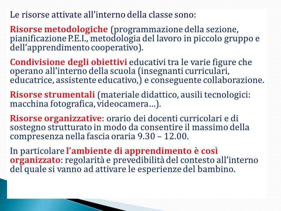 Le risorse attivate allinterno della classe sono: Risorse metodologiche (programmazione della sezione, pianificazione P.E.I., metodologia del lavoro i