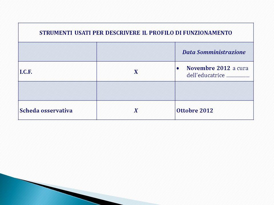 STRUMENTI USATI PER DESCRIVERE IL PROFILO DI FUNZIONAMENTO Data Somministrazione I.C.F.X Novembre 2012 a cura delleducatrice.................... Sched