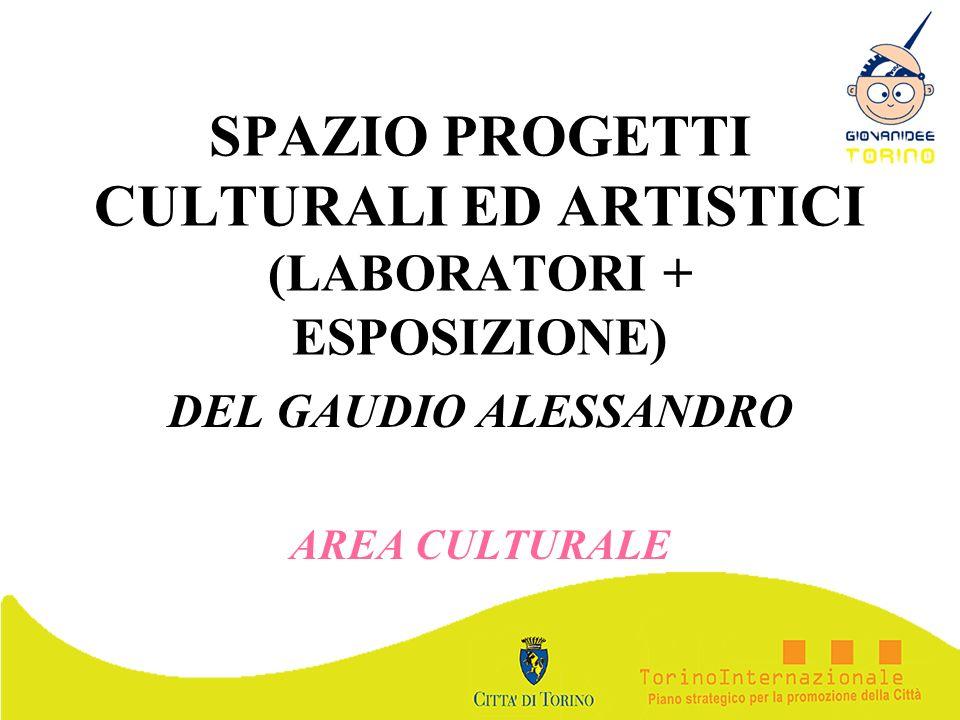 SPAZIO PROGETTI CULTURALI ED ARTISTICI (LABORATORI + ESPOSIZIONE) DEL GAUDIO ALESSANDRO AREA CULTURALE
