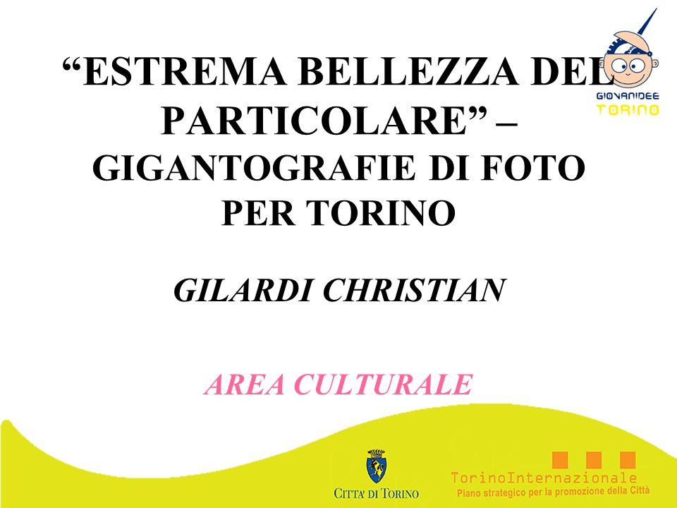ESTREMA BELLEZZA DEL PARTICOLARE – GIGANTOGRAFIE DI FOTO PER TORINO GILARDI CHRISTIAN AREA CULTURALE
