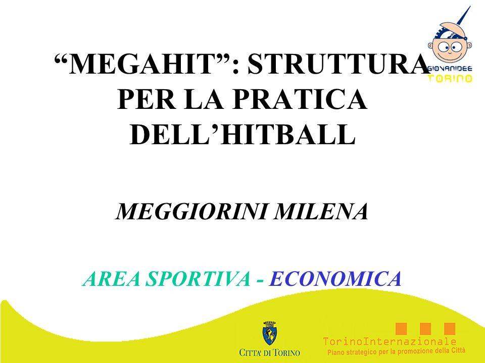 MEGAHIT: STRUTTURA PER LA PRATICA DELLHITBALL MEGGIORINI MILENA AREA SPORTIVA - ECONOMICA