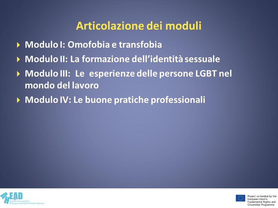 Articolazione dei moduli Modulo I: Omofobia e transfobia Modulo II: La formazione dellidentità sessuale Modulo III: Le esperienze delle persone LGBT nel mondo del lavoro Modulo IV: Le buone pratiche professionali