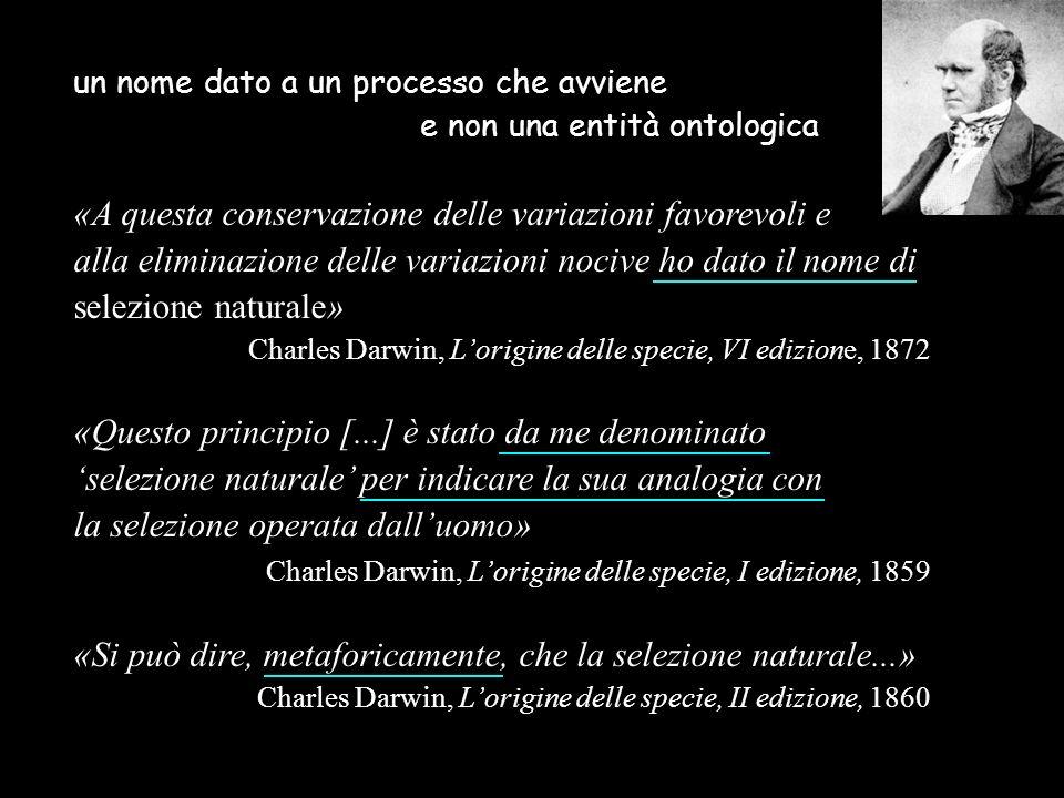 un nome dato a un processo che avviene e non una entità ontologica «A questa conservazione delle variazioni favorevoli e alla eliminazione delle varia