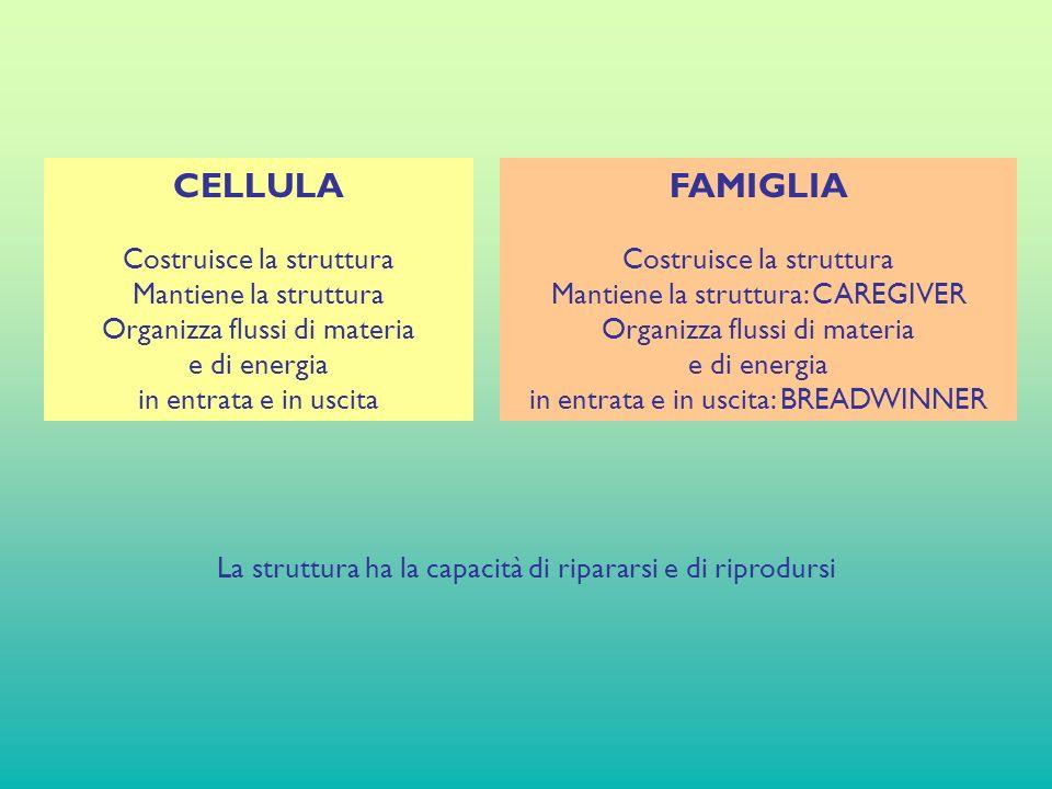 CELLULA Costruisce la struttura Mantiene la struttura Organizza flussi di materia e di energia in entrata e in uscita FAMIGLIA Costruisce la struttura Mantiene la struttura: CAREGIVER Organizza flussi di materia e di energia in entrata e in uscita: BREADWINNER La struttura ha la capacità di ripararsi e di riprodursi