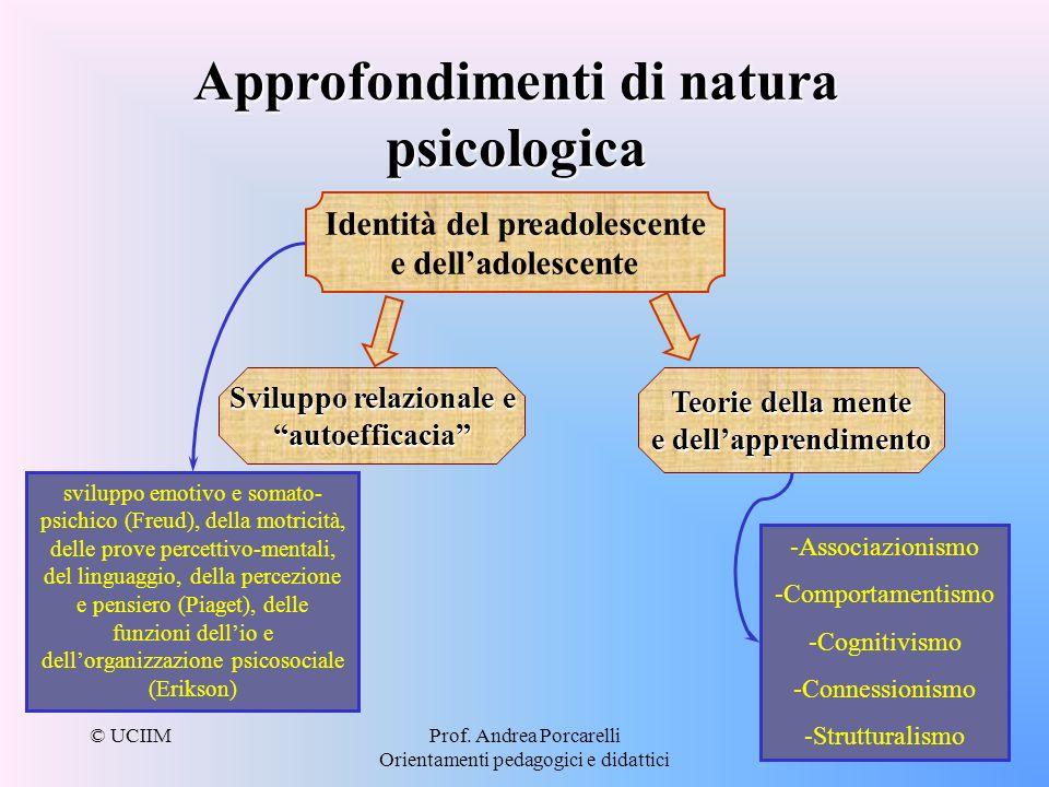 © UCIIMProf. Andrea Porcarelli Orientamenti pedagogici e didattici Approfondimenti di natura psicologica Identità del preadolescente e delladolescente