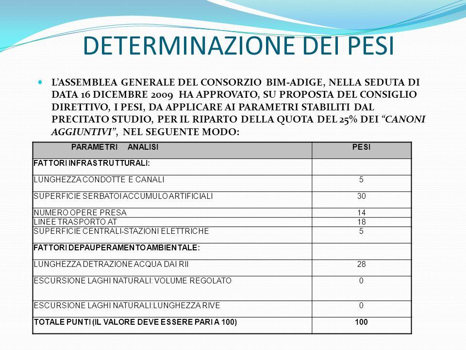 DETERMINAZIONE DEI PESI LASSEMBLEA GENERALE DEL CONSORZIO BIM-ADIGE, NELLA SEDUTA DI DATA 16 DICEMBRE 2009 HA APPROVATO, SU PROPOSTA DEL CONSIGLIO DIR