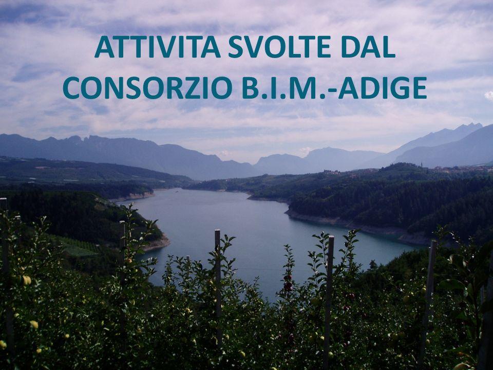 ATTIVITA SVOLTE DAL CONSORZIO B.I.M.-ADIGE