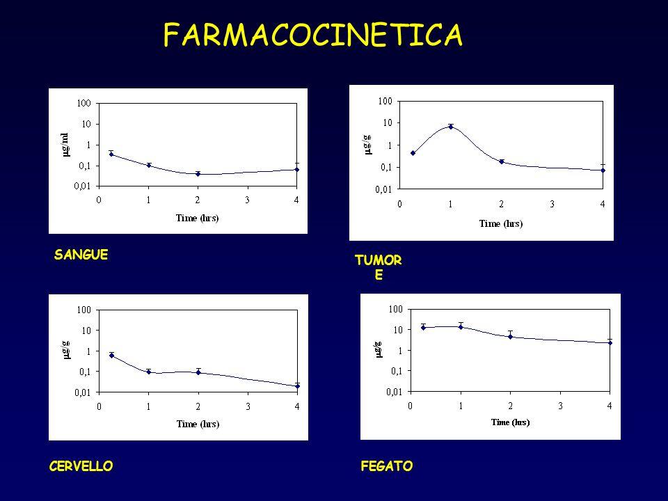 FARMACOCINETICA SANGUE TUMOR E CERVELLOFEGATO