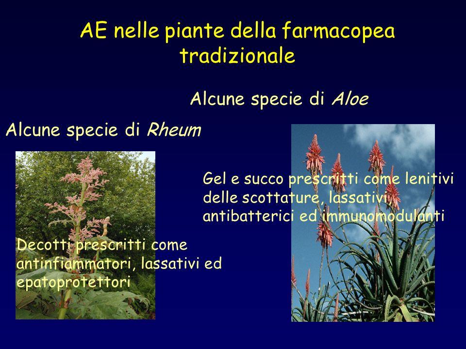 AE nelle piante della farmacopea tradizionale Alcune specie di Aloe Alcune specie di Rheum Decotti prescritti come antinfiammatori, lassativi ed epato