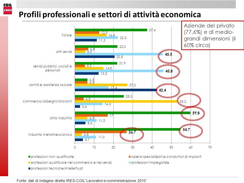 Profili professionali e settori di attività economica Aziende del privato (77,6%) e di medio- grandi dimensioni (il 60% circa) Fonte: dati di Indagine