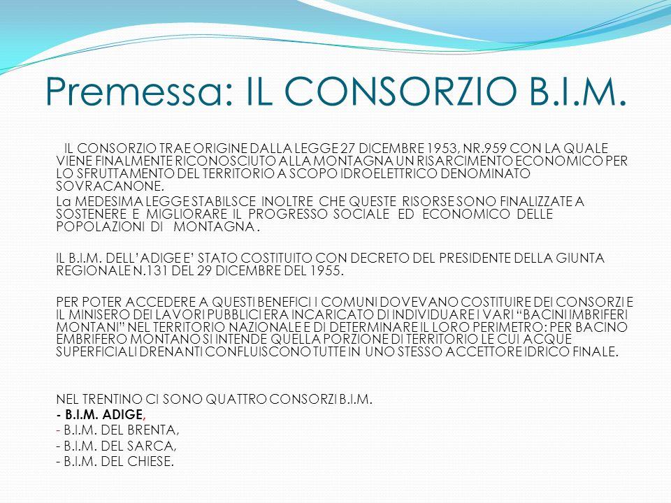 Premessa: IL CONSORZIO B.I.M. IL CONSORZIO TRAE ORIGINE DALLA LEGGE 27 DICEMBRE 1953, NR.959 CON LA QUALE VIENE FINALMENTE RICONOSCIUTO ALLA MONTAGNA