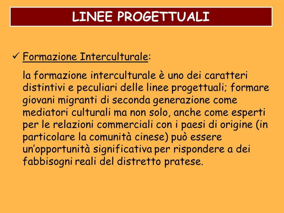 LINEE PROGETTUALI Formazione Interculturale: la formazione interculturale è uno dei caratteri distintivi e peculiari delle linee progettuali; formare