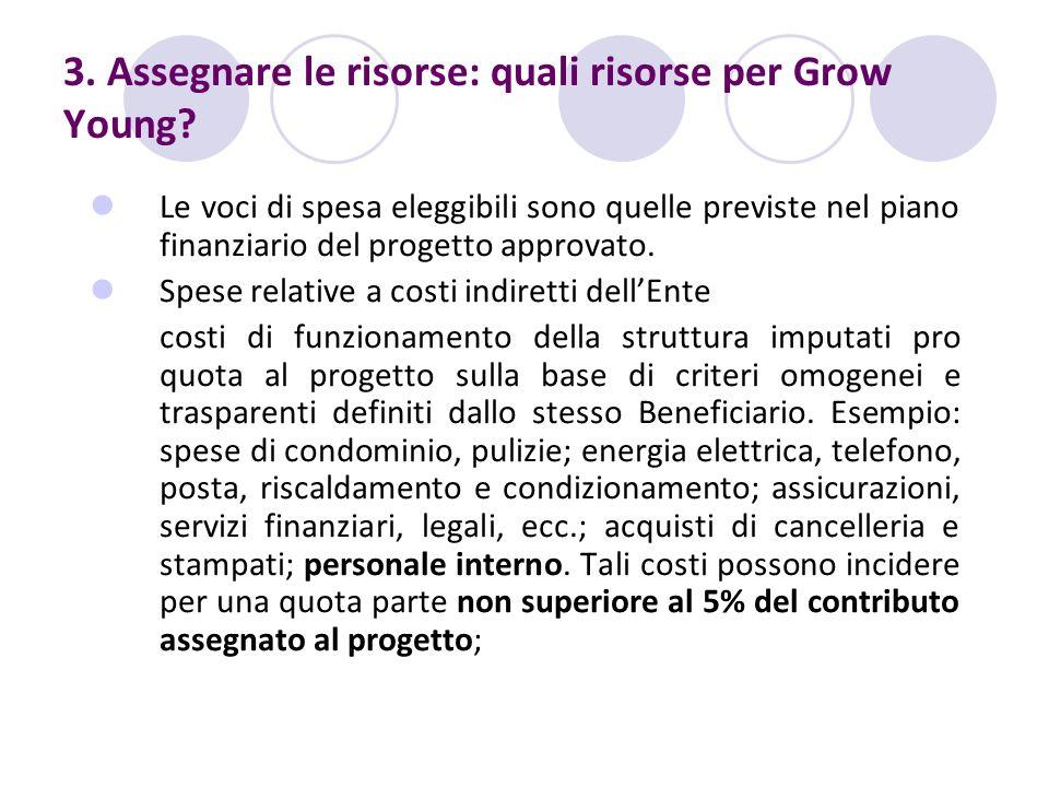 3. Assegnare le risorse: quali risorse per Grow Young? Le voci di spesa eleggibili sono quelle previste nel piano finanziario del progetto approvato.