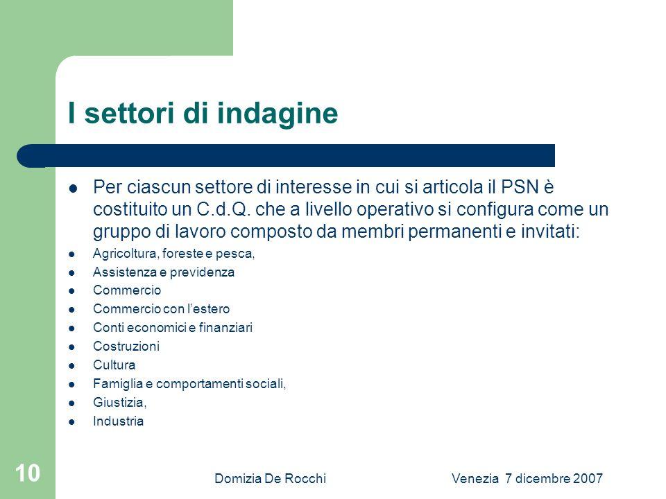 Domizia De RocchiVenezia 7 dicembre 2007 10 I settori di indagine Per ciascun settore di interesse in cui si articola il PSN è costituito un C.d.Q.
