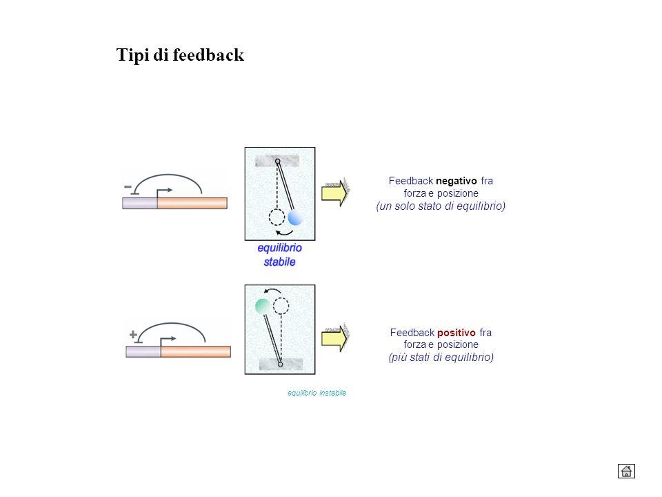 Tipi di feedback Feedback negativo fra forza e posizione (un solo stato di equilibrio) Feedback positivo fra forza e posizione (più stati di equilibri