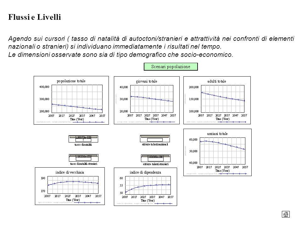 Flussi e Livelli Agendo sui cursori ( tasso di natalità di autoctoni/stranieri e attrattività nei confronti di elementi nazionali o stranieri) si indi