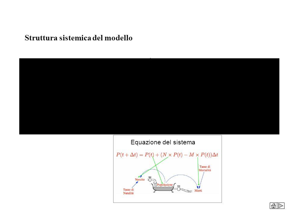 Struttura sistemica del modello Equazione del sistema