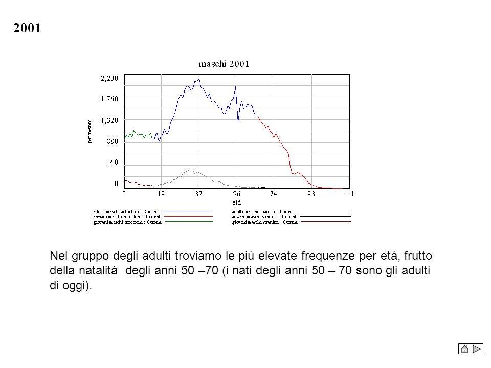 2001 Nel gruppo degli adulti troviamo le più elevate frequenze per età, frutto della natalità degli anni 50 –70 (i nati degli anni 50 – 70 sono gli ad