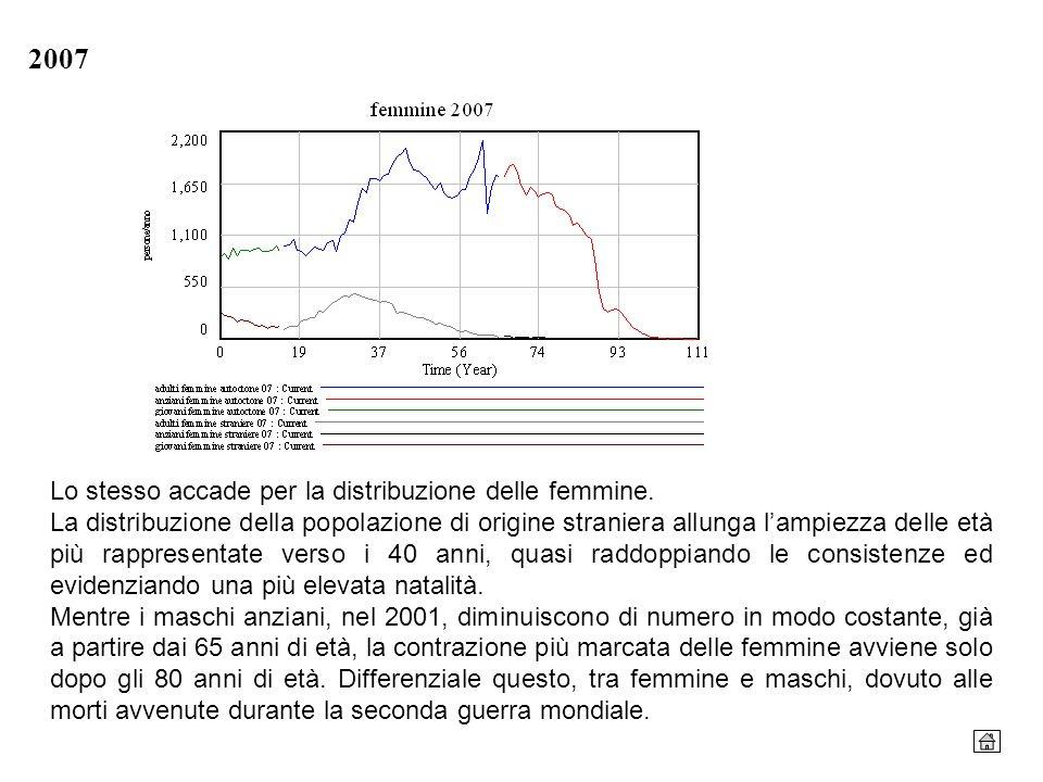 2007 Lo stesso accade per la distribuzione delle femmine. La distribuzione della popolazione di origine straniera allunga lampiezza delle età più rapp
