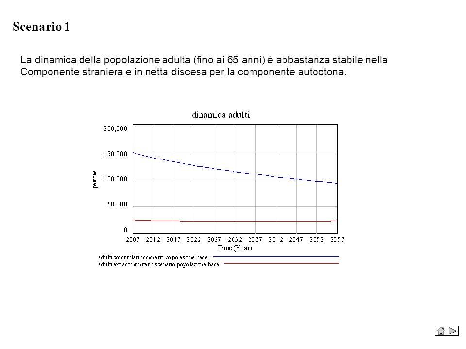 Scenario 1 La dinamica della popolazione adulta (fino ai 65 anni) è abbastanza stabile nella Componente straniera e in netta discesa per la componente