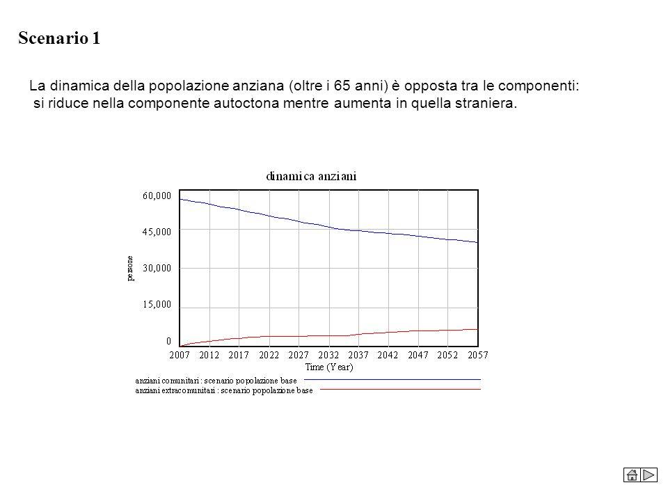 Scenario 1 La dinamica della popolazione anziana (oltre i 65 anni) è opposta tra le componenti: si riduce nella componente autoctona mentre aumenta in