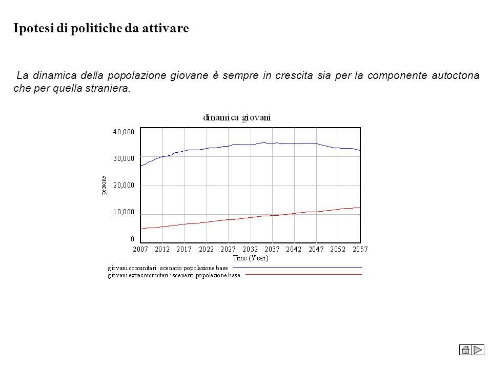 Ipotesi di politiche da attivare La dinamica della popolazione giovane è sempre in crescita sia per la componente autoctona che per quella straniera.