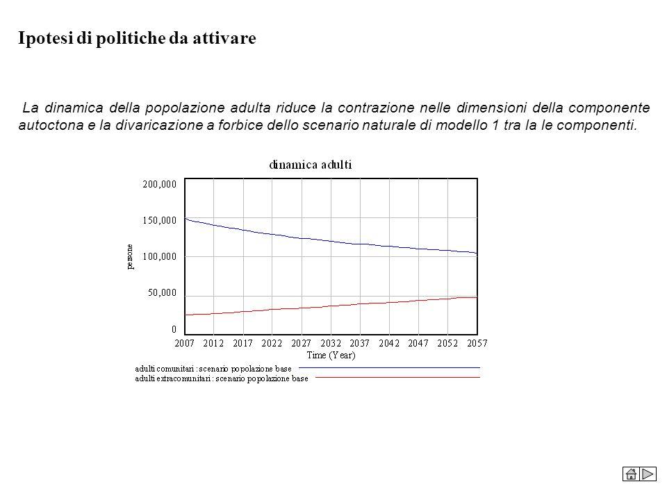 Ipotesi di politiche da attivare La dinamica della popolazione adulta riduce la contrazione nelle dimensioni della componente autoctona e la divaricaz