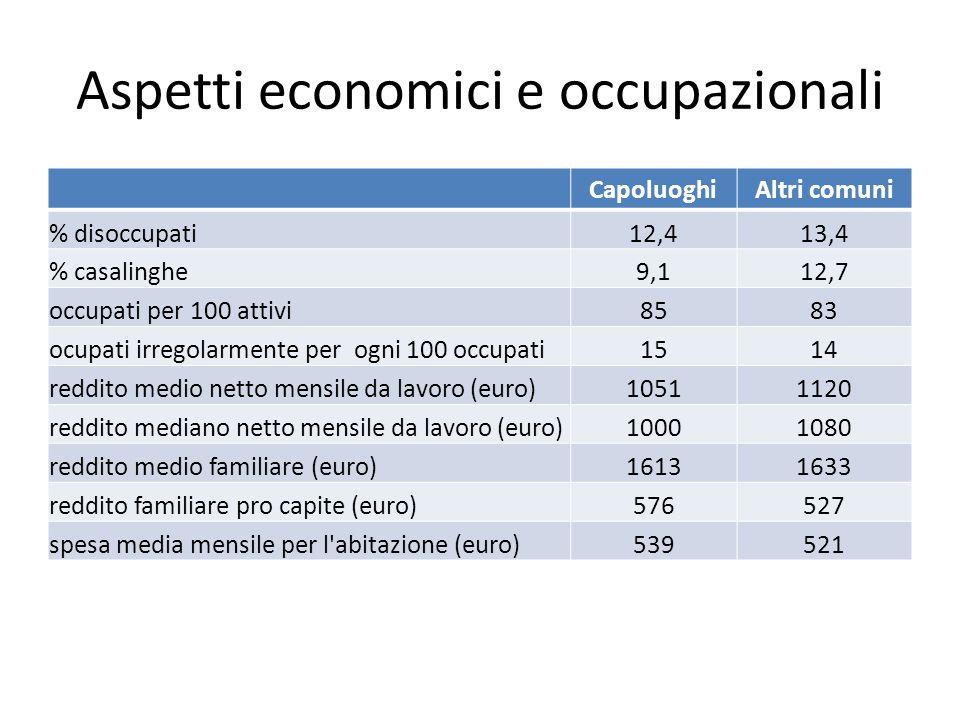 Aspetti economici e occupazionali CapoluoghiAltri comuni % disoccupati12,413,4 % casalinghe9,112,7 occupati per 100 attivi8583 ocupati irregolarmente