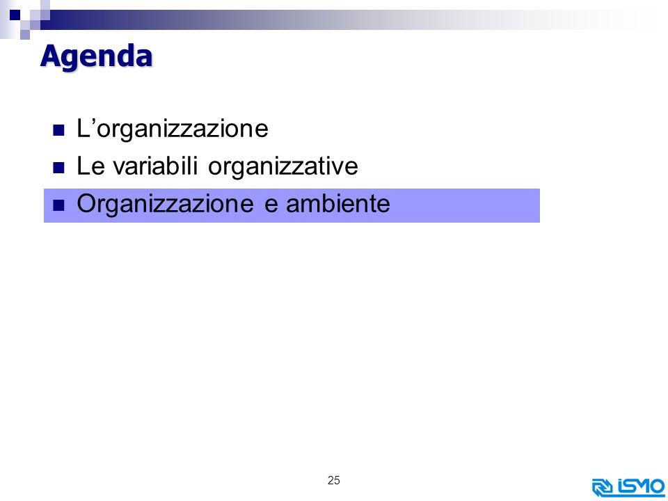 25 Agenda Lorganizzazione Le variabili organizzative Organizzazione e ambiente