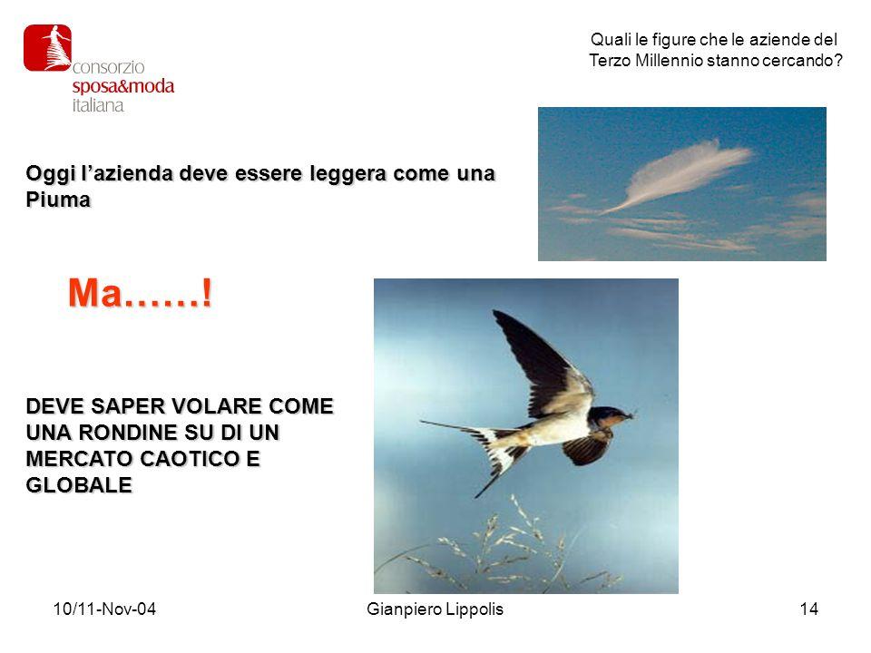 10/11-Nov-04Gianpiero Lippolis14 Quali le figure che le aziende del Terzo Millennio stanno cercando? Oggi lazienda deve essere leggera come una Piuma