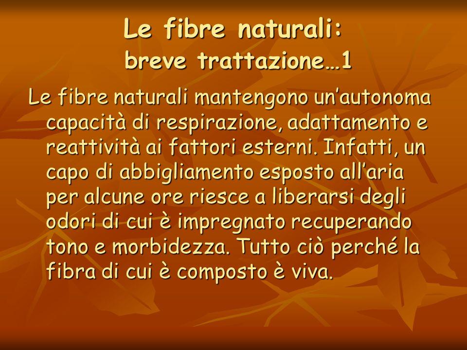 Le fibre naturali: breve trattazione…2 La loro traspirabilità riduce sensibilmente il sudore stagnante sulla pelle aumentando lo scambio termico tra organismo e ambiente.