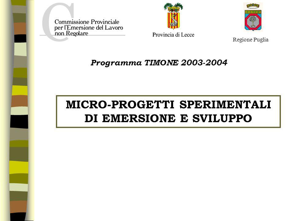 Regione Puglia MICRO-PROGETTI SPERIMENTALI DI EMERSIONE E SVILUPPO Programma TIMONE 2003-2004