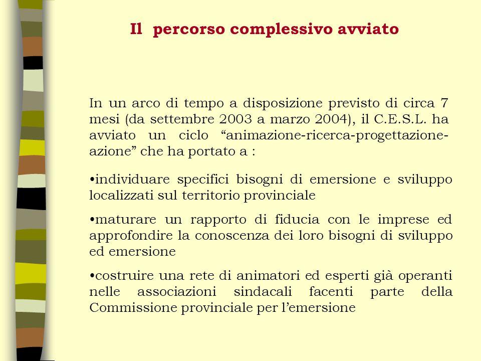 Il percorso complessivo avviato In un arco di tempo a disposizione previsto di circa 7 mesi (da settembre 2003 a marzo 2004), il C.E.S.L.
