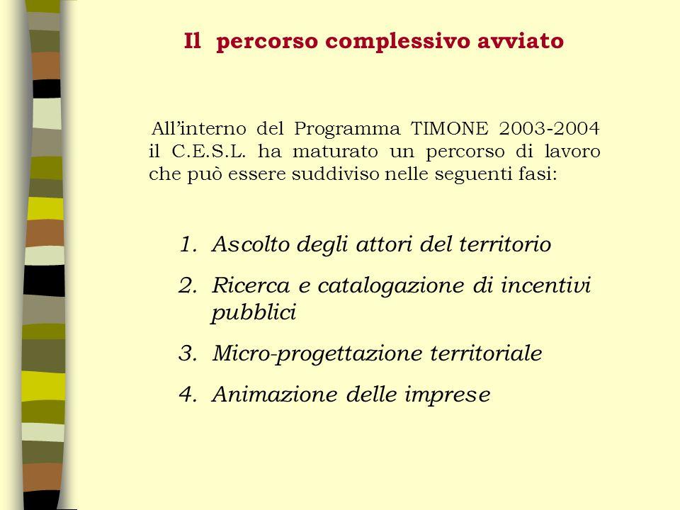 Il percorso complessivo avviato Allinterno del Programma TIMONE 2003-2004 il C.E.S.L.