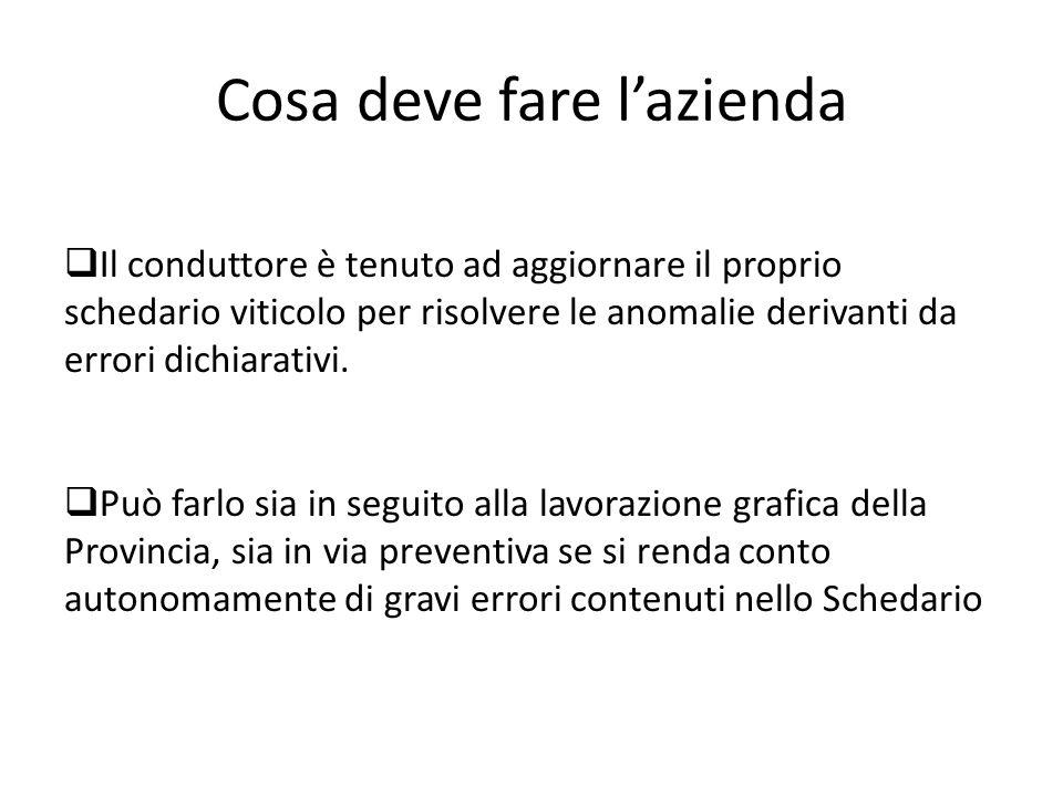 Cosa deve fare lazienda Il conduttore è tenuto ad aggiornare il proprio schedario viticolo per risolvere le anomalie derivanti da errori dichiarativi.