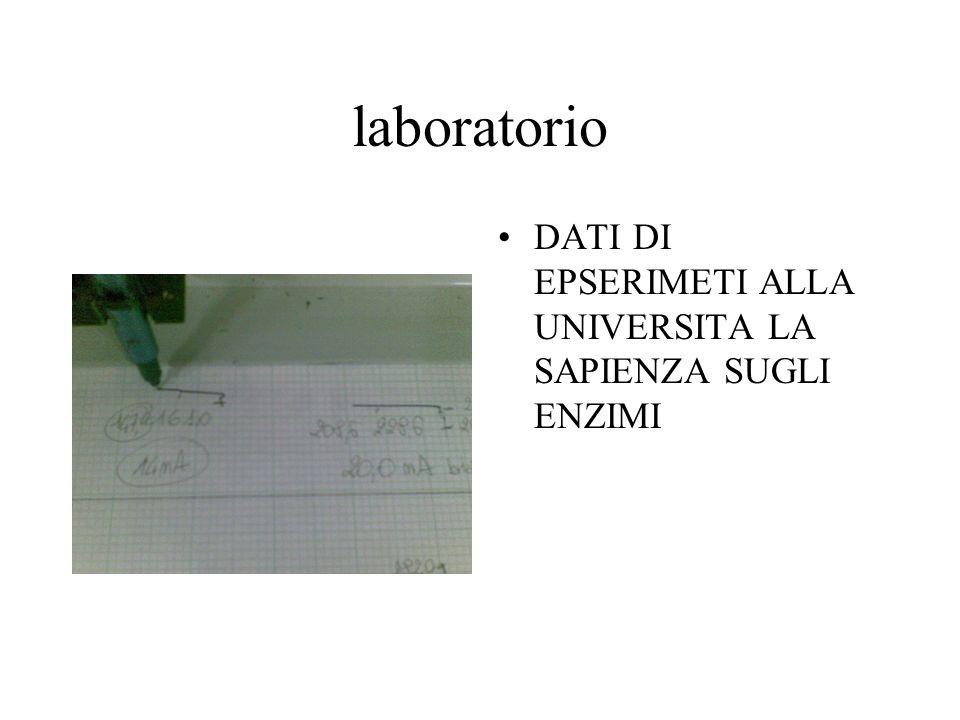 laboratorio DATI DI EPSERIMETI ALLA UNIVERSITA LA SAPIENZA SUGLI ENZIMI