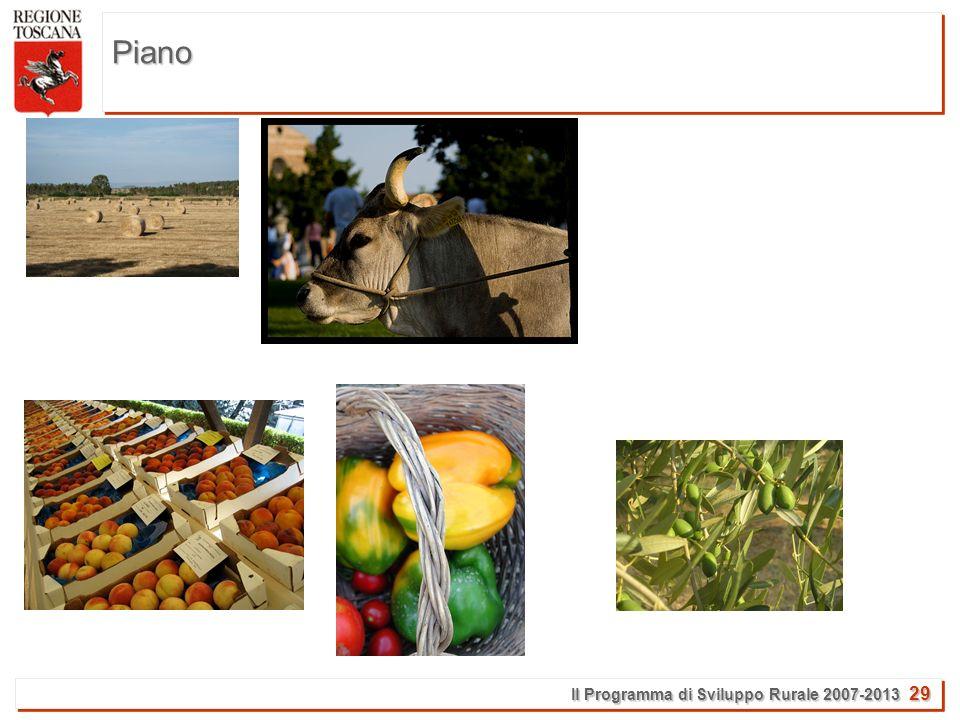 Il Programma di Sviluppo Rurale 2007-2013 29 Piano