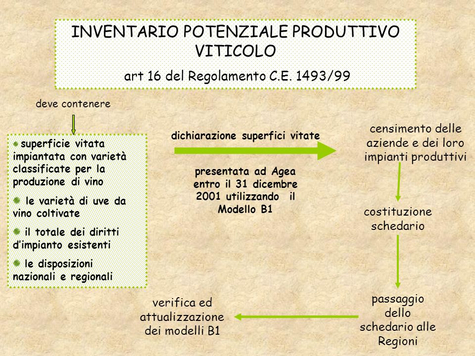 INVENTARIO POTENZIALE PRODUTTIVO VITICOLO art 16 del Regolamento C.E.
