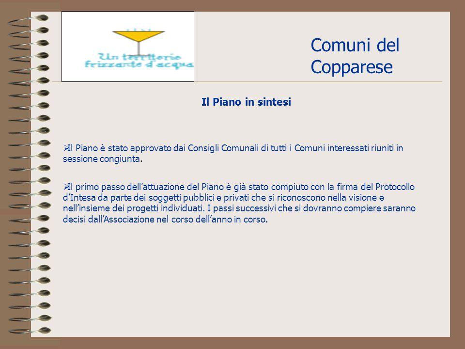 Comuni del Copparese Il Piano in sintesi Il Piano è stato approvato dai Consigli Comunali di tutti i Comuni interessati riuniti in sessione congiunta.