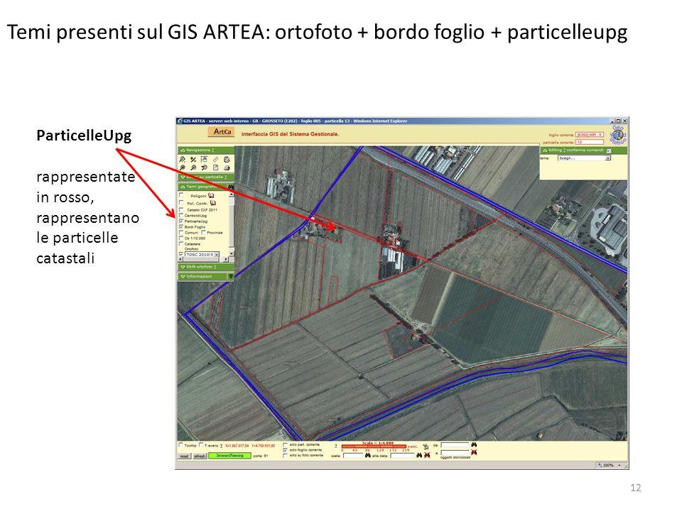 12 Temi presenti sul GIS ARTEA: ortofoto + bordo foglio + particelleupg ParticelleUpg rappresentate in rosso, rappresentano le particelle catastali