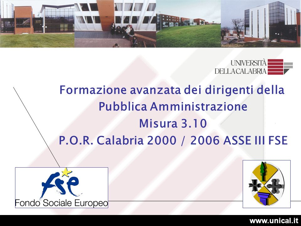 www.unical.it Formazione avanzata dei dirigenti della Pubblica Amministrazione Misura 3.10 P.O.R.