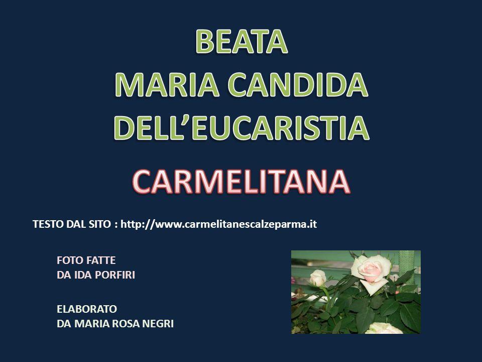 TESTO DAL SITO : http://www.carmelitanescalzeparma.it FOTO FATTE DA IDA PORFIRI ELABORATO DA MARIA ROSA NEGRI