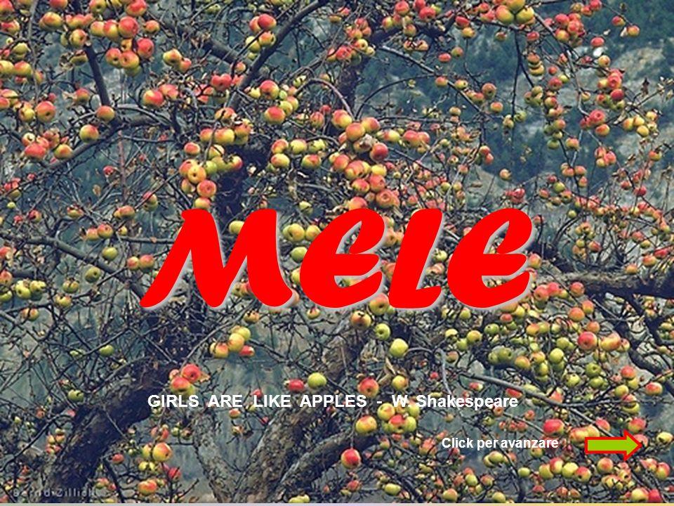 MELE GIRLS ARE LIKE APPLES - W. Shakespeare Click per avanzare