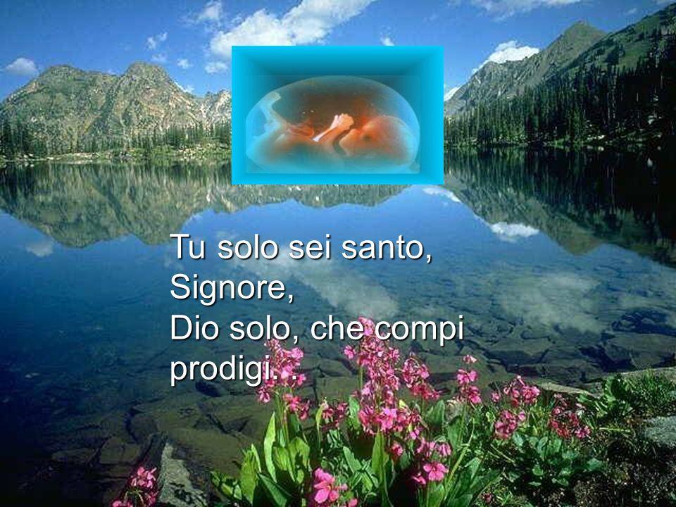 Tu solo sei santo, Signore, Dio solo, che compi prodigi..