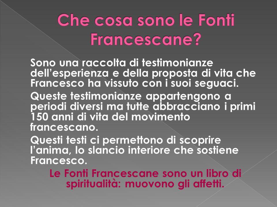 Sono una raccolta di testimonianze dellesperienza e della proposta di vita che Francesco ha vissuto con i suoi seguaci. Queste testimonianze apparteng