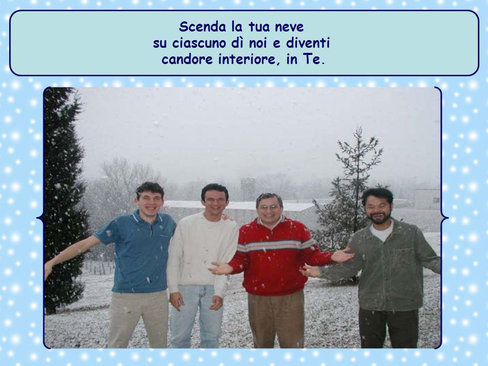 Scenda la tua neve su Maratea e tutte le Parrocchie..., e diventi candida immagine di Te.