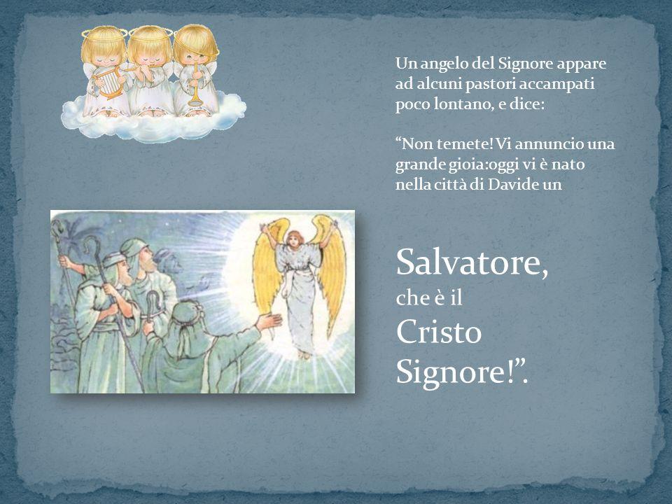 Un angelo del Signore appare ad alcuni pastori accampati poco lontano, e dice: Non temete! Vi annuncio una grande gioia:oggi vi è nato nella città di