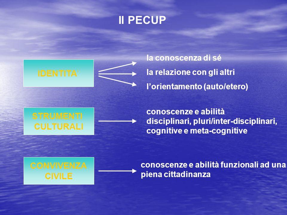 Il PECUP STRUMENTI CULTURALI CONVIVENZA CIVILE la conoscenza di sé la relazione con gli altri lorientamento (auto/etero) conoscenze e abilità funziona