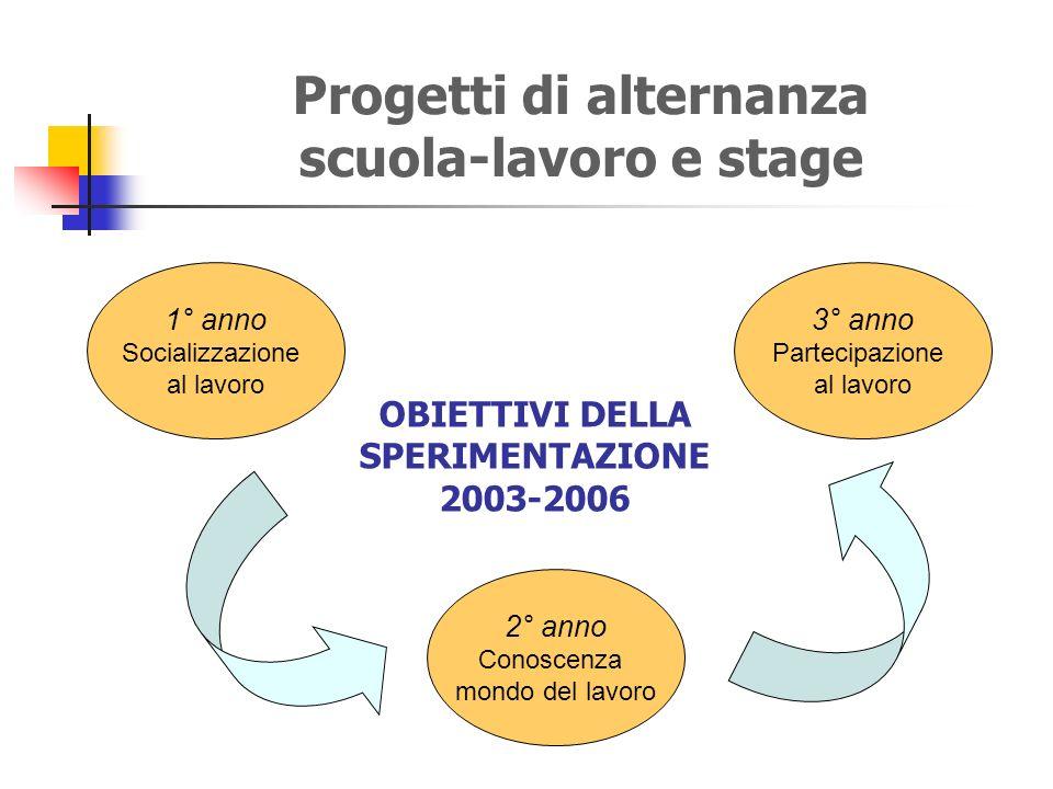 Progetti di alternanza scuola-lavoro e stage 1° anno Socializzazione al lavoro 2° anno Conoscenza mondo del lavoro 3° anno Partecipazione al lavoro OBIETTIVI DELLA SPERIMENTAZIONE 2003-2006